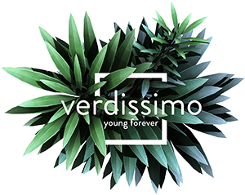 Logo - Verdissimo
