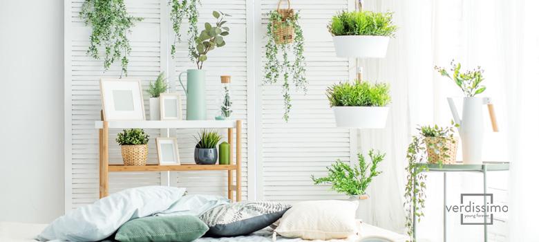 diseños de jardines interiores con flores - verdissimo