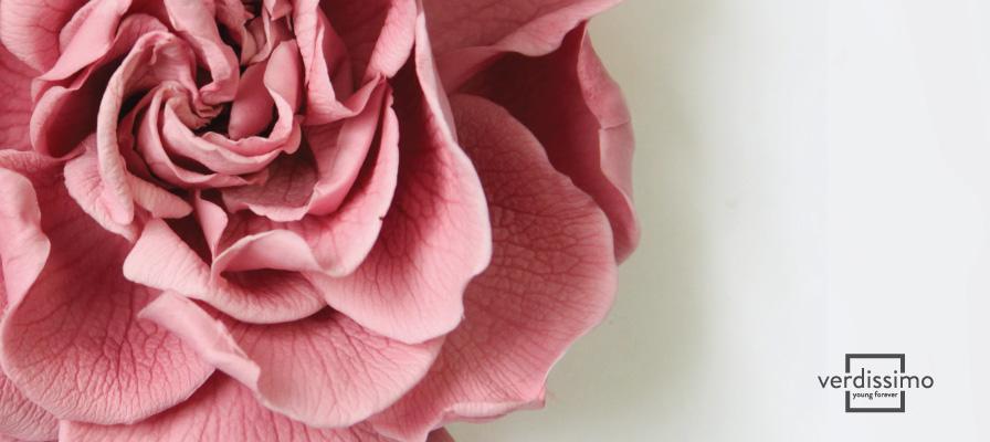 Young Forever: Ventajas de la preservación floral - Verdissimo