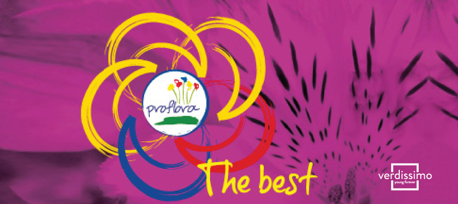 Verdissimo will participate in Proflora 2015 in Bogota - Verdissimo