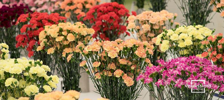 Grandes ideas para mejorar tu floristería - Verdissimo