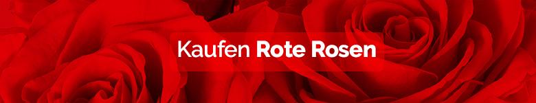 banner rosas rojas DE - verdissimo