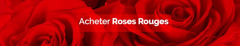 banner rosas rojas FR - verdissimo