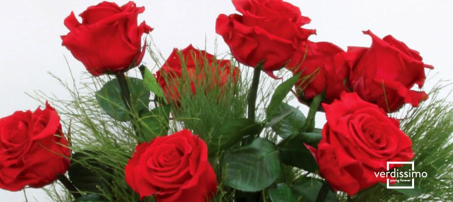 Cómo Cuidar Una Flor Preservada Verdissimo
