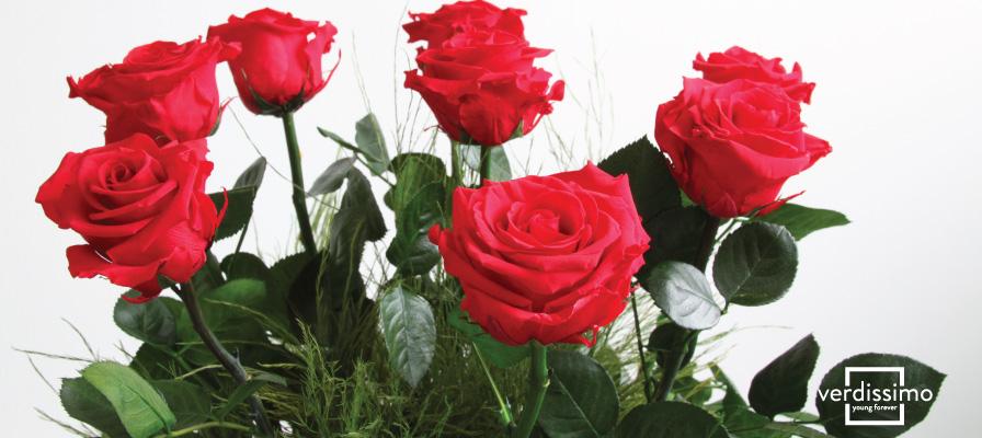 Rosas preservadas para decorar - Verdissimo