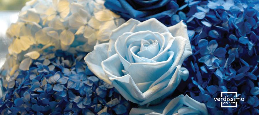 Especial Día de la Madre. ¡Regálale flores que se mantengan siempre bellas! - Verdissimo