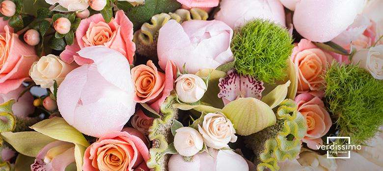 flores de primavera - verdissimo
