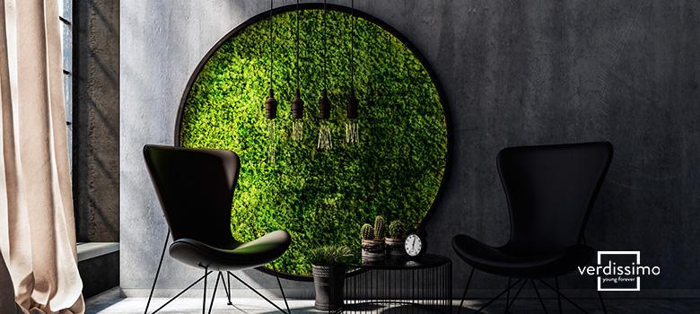 musgo preservado - verdissimo