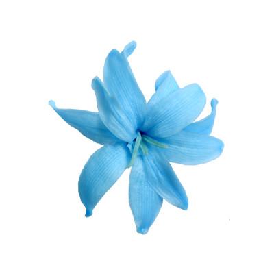 Las Flores Más Bonitas Del Mundo Verdissimo