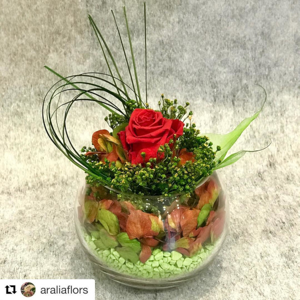 arreglos florales en peceras - verdissimo