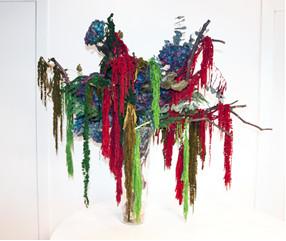 Amaranthus composition - Verdissimo