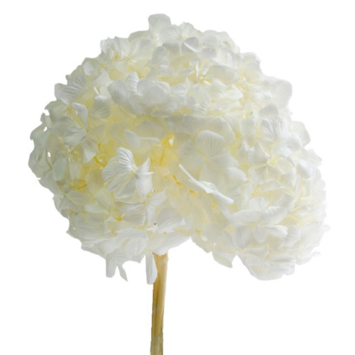 hortensia mejores arreglos florales - verdissimo