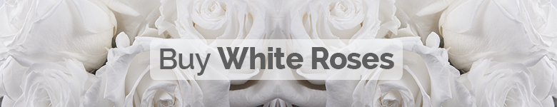 Buy white roses - Verdissimo