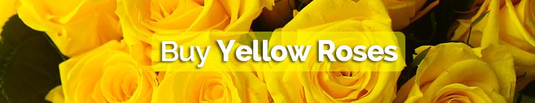 Buy yellow roses - Verdissimo