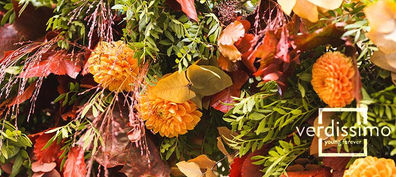 colores de otoño - verdissimo