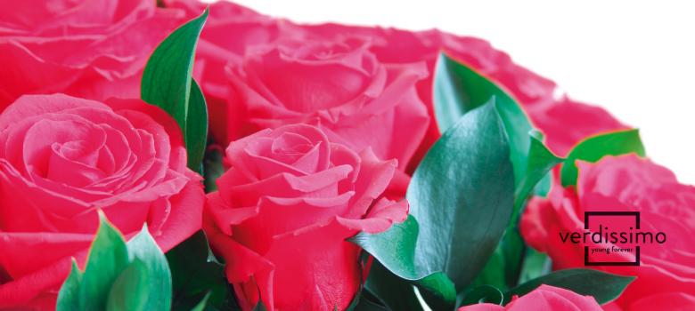 comprar flores preservadas - verdissimo