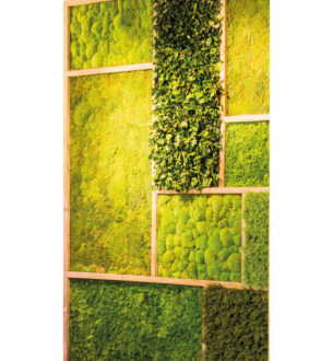 Deco Panels - Verdissimo