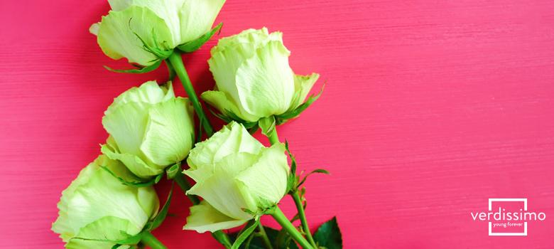 el significado de las rosas verdes y sus principales usos - verdissimo