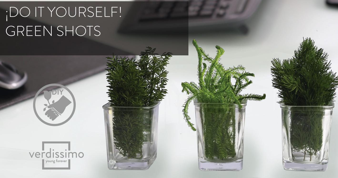 Do it yourself! – Green Shots - Verdissimo