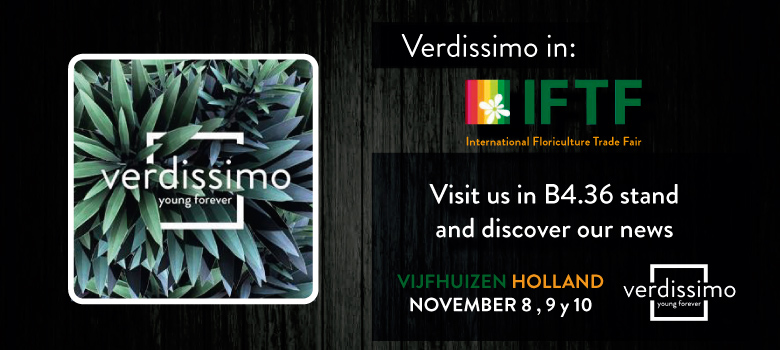 Verdissimo will once again take part in Holland's IFTF