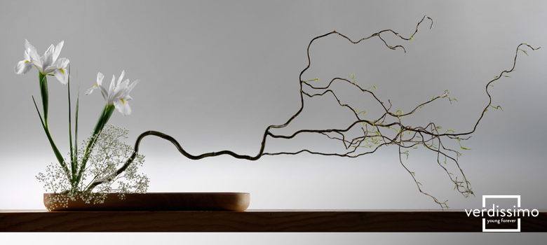 Ikebana, arte japonés - verdissimo