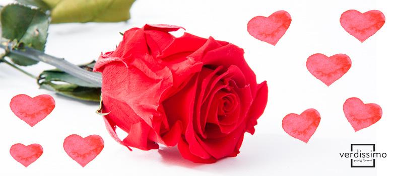 Flower Arrangements for Valentine\u0027s Day , Verdissimo