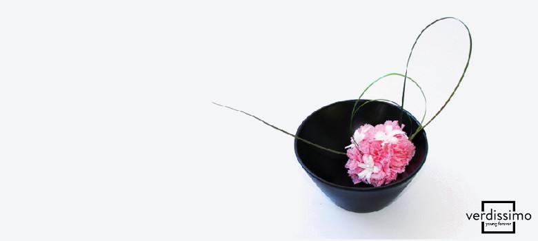 Die Blume des Monats: Narde - Verdissimo