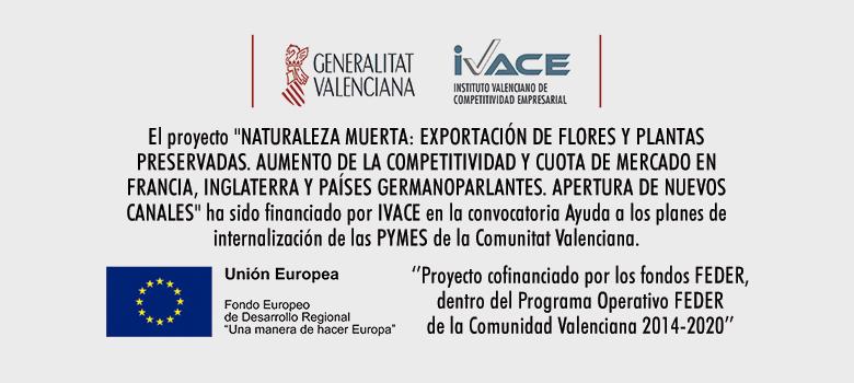 """Verdissimo consigue con éxito la ayuda """"Planes de Internalización Pymes CV"""" del IVACE - Verdissimo"""