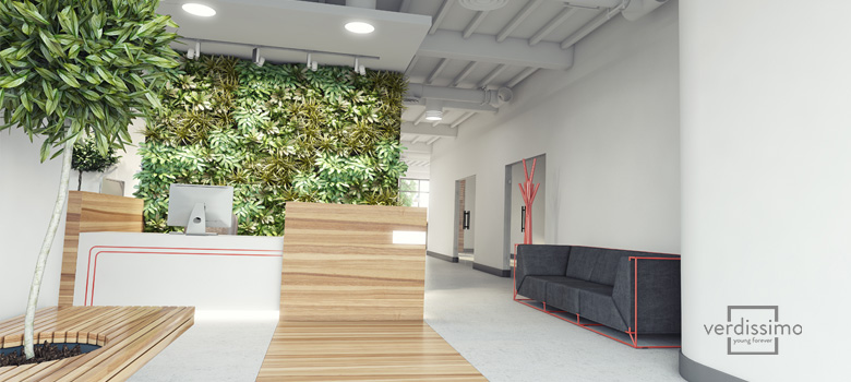 arboles ornamentales para decorar espacios pequeños - verdissimo