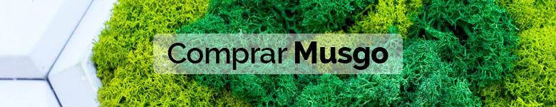 banner musgo preservado - verdissimo