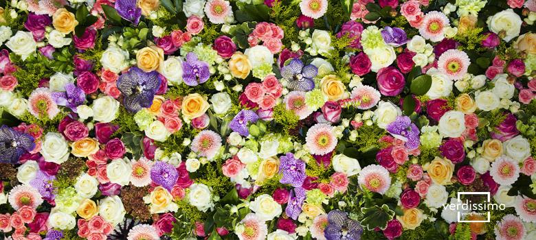 flores mas bonitas del mundo - verdissimo