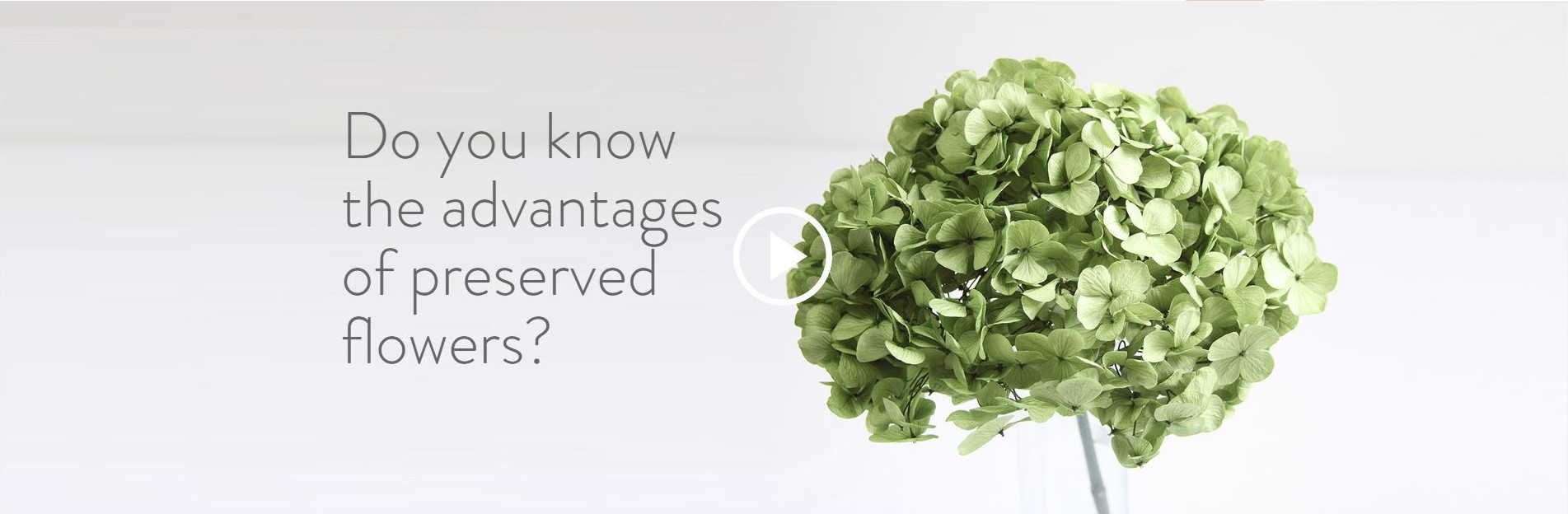 Do you know the advantages of preserved flowers?