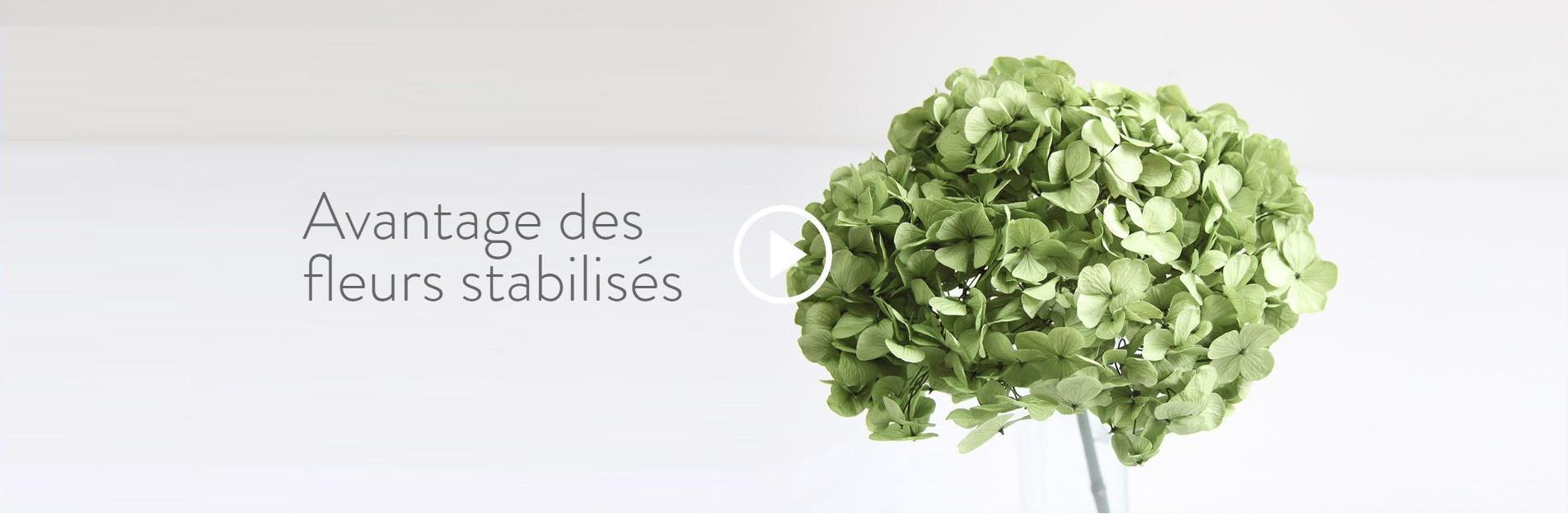 Avantage des fleurs stabilisés