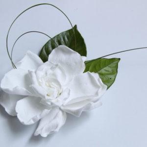 gardenias - verdissimo
