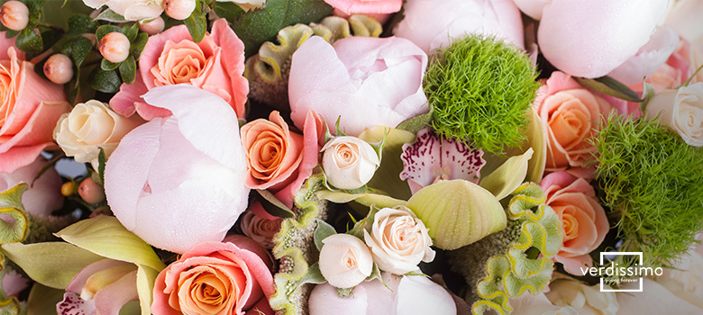 fruhlingsblumen - verdissimo