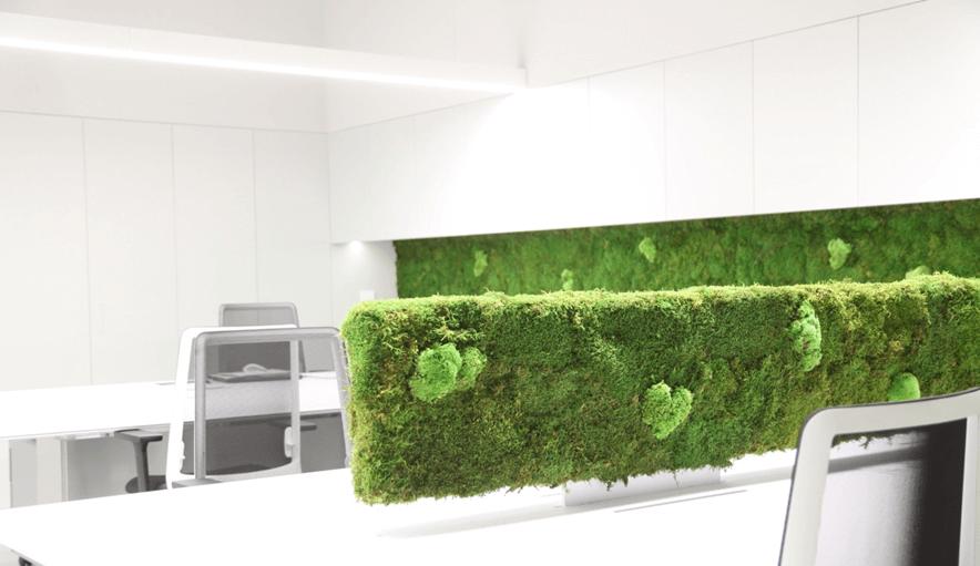 Raumteilung mit Grünem - Verdissimo