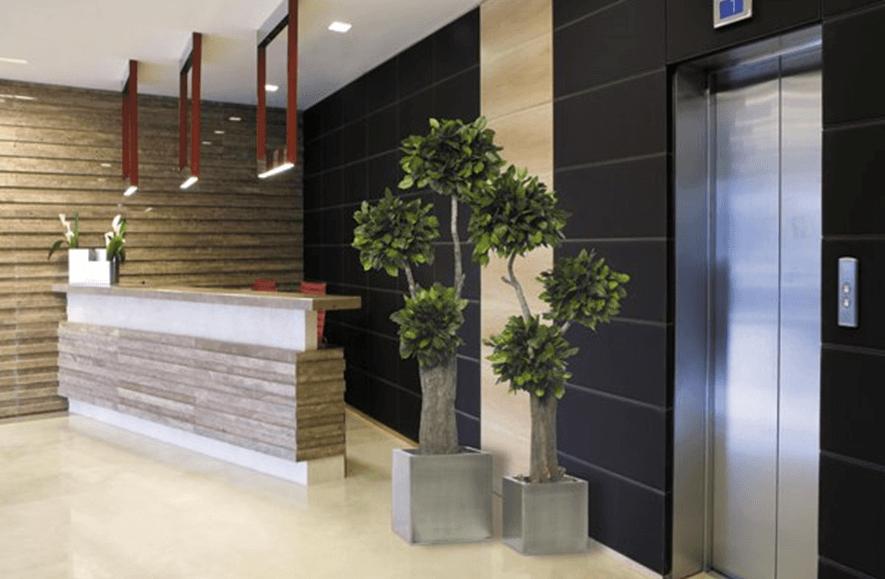 La décoration de la réception d'un hôtel - Verdissimo
