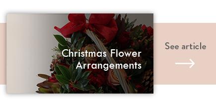 cta christmas flower arrangements - verdissimo