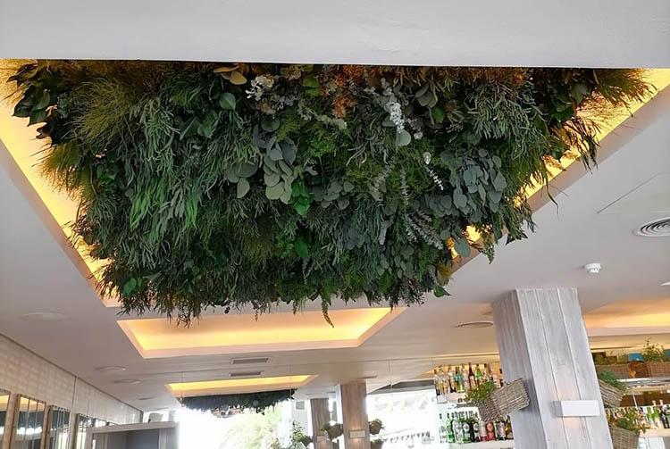 Decoración plantas y flores techo - Verdissimo