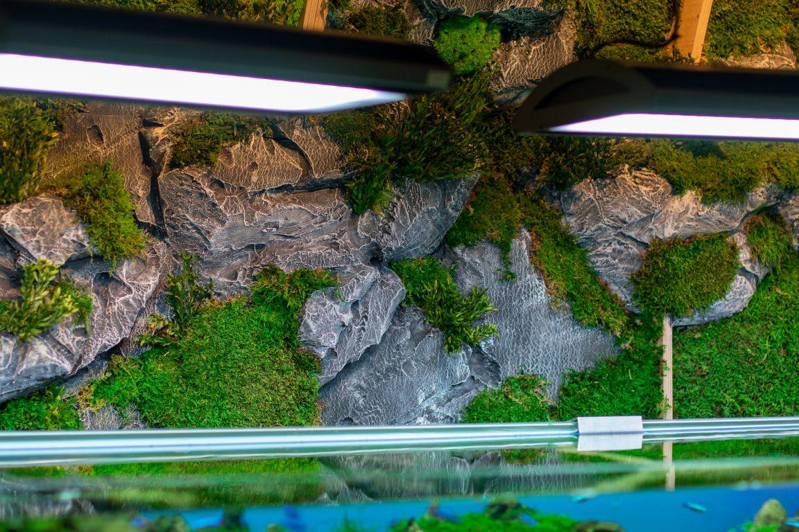 galeria oceanografic - verdissimo