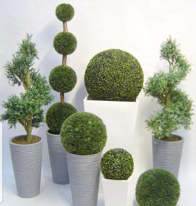 decoracion con topiarios y preservado img4 - verdissimo