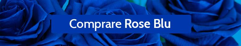 BANNER Comprare rose blu