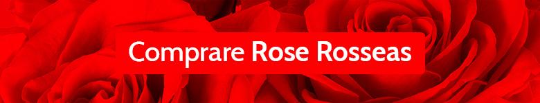 Banner Rose Rossa