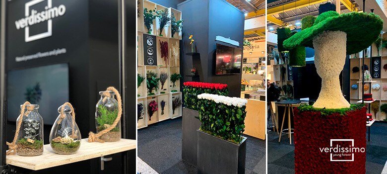 la presencia de verdissimo en la iftf 2019 - verdissimo