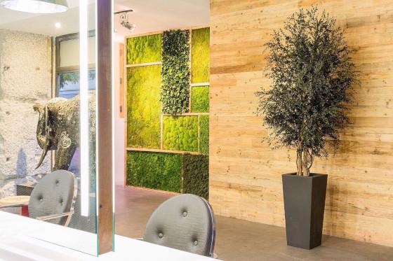 muros verticales - verdissimo
