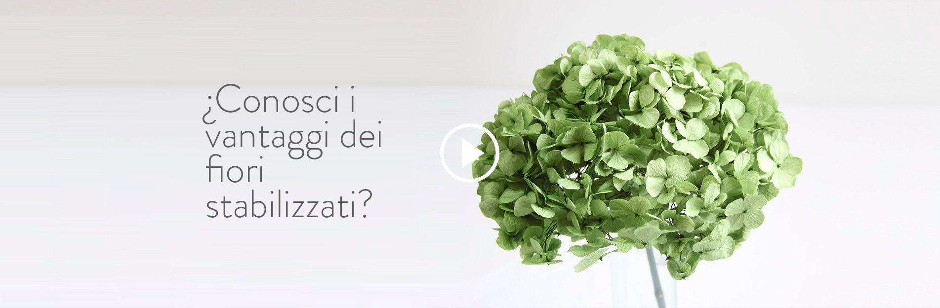 Conosci i vantaggi dei fiori  stabilizzati?