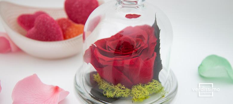 Arreglo de rosas rojas - San Valentin