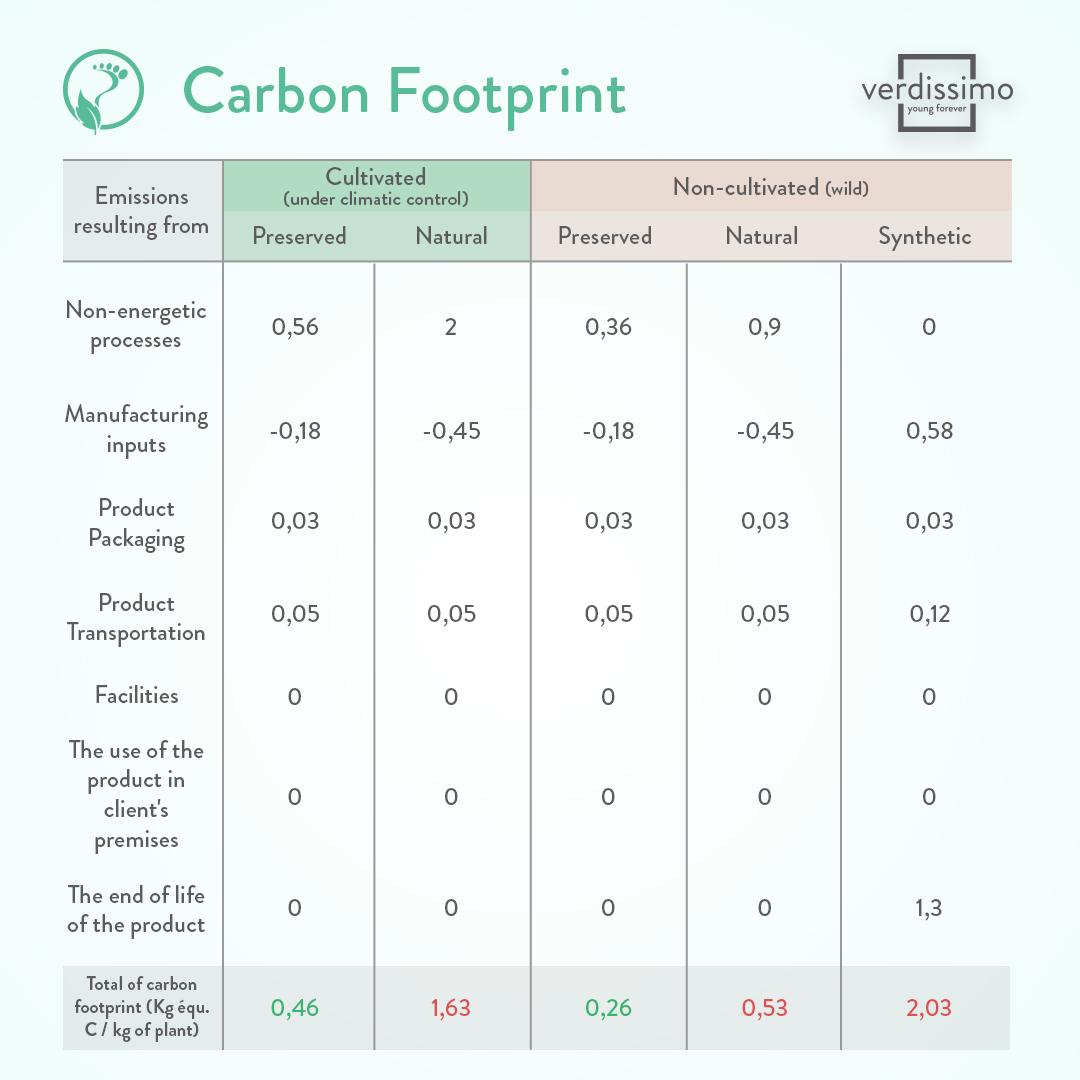 Carbon footprint plants - Verdissimo