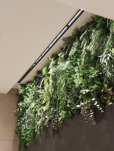 Lamparas en pared con verde preservado - Verdissimo