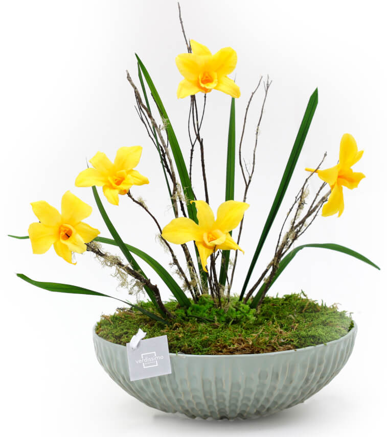 queremos llenar el mundo de flores img2 - verdissimo